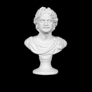 gipsovaya-figura-byust-petra-i
