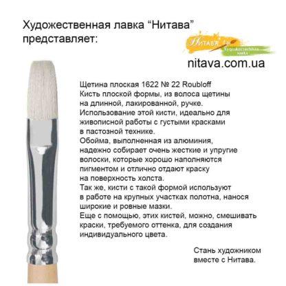 shchetina-ploskaya-1622-22-roubloff