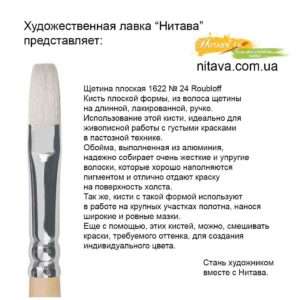 shchetina-ploskaya-1622-24-roubloff