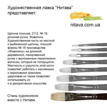 shchetina-ploskaya-2112-16-dlinnaya-ruchka-belyi-vors-zhivopis