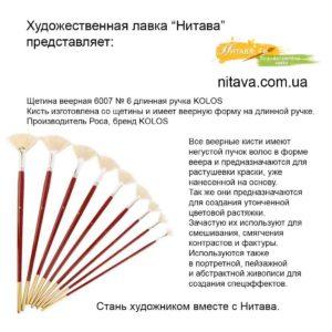 shchetina-veernaya-6007-6-d-r-kist-kolos