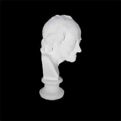 gipsovaya-figura-byust-voltera-mini1