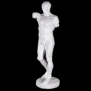 gipsovaya-figura-figura-ekorshe-vysokaya 00