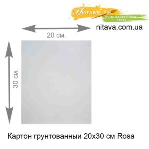 karton-gruntovannyi-20x30-sm-rosa