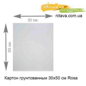 karton-gruntovannyi-30x50-sm-rosa