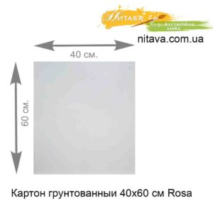 karton-gruntovannyi-40x60-sm-rosa