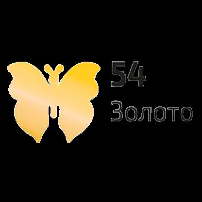 akril-dlja-dekora-rosa-talent-54-20-ml-zoloto-3